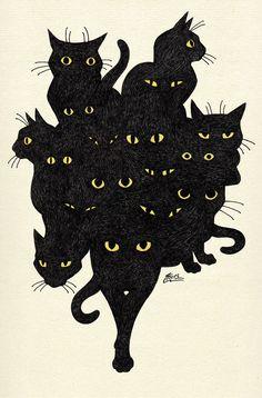 Black cat tango by MacGreen