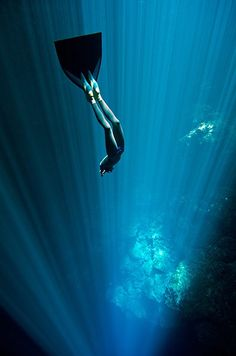 Free diving: Free diving cenote mexico. 'The depth of these cenotes is often unknown due to the swirling white halocline that hovers at around 30m, a chemical reaction between layers of fresh and salt water, through which the sunlight barely pierces.'  Eusebio Saenz de Santamaria, Australian freediver
