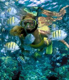 (Isla Mujeres, Mexico) Snorkeling.   Just minutes from our home you can pay $5 to go snorkeling just like this lady.   They area has at least 20 different kinds of fish.