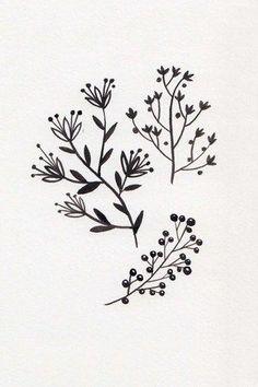 Bullet Journal Art, Bullet Journal Inspiration, Simple Line Drawings, Easy Drawings, Plant Illustration, Botanical Illustration, Doodle Drawings, Doodle Art, Botanical Line Drawing