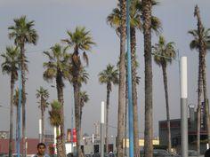 Alrededores de la mezquita