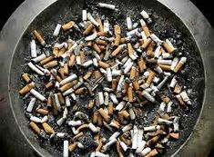 Cigarette butts lie in an ashtray outside a Montreal office building. Recycling, Wellness, Health, Repurpose, Montreal, Childhood, Building, Objects, Infancy