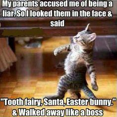 My parents accused me of being a liar so I looked them straight in the face and said tooth fairy Santa easter bunny and walked away like a boss
