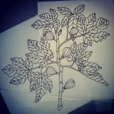 fig tree tattoo, meaning: longevity, conflict, idleness, reconciliation, vigorousness, and overabundance