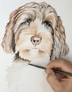 Watercolor Paintings Of Animals, Watercolor Art Lessons, Animal Paintings, Animal Drawings, Pet Drawings, Animal Watercolour, Watercolor Portrait Painting, Portraits Pop Art, Dog Artwork