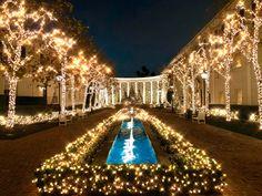 Beverly Hills, Christmas, Beautiful, Xmas, Navidad, Noel, Natal, Kerst