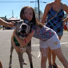Dogs Overrun Topsfield; Everyone Happy