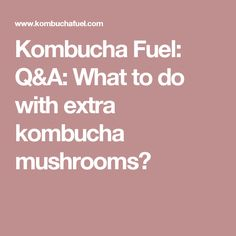 Kombucha Fuel: Q&A: What to do with extra kombucha mushrooms?