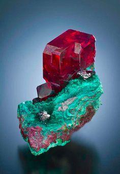Cuprita en Malaquita - ambos minerales de cobre en base de muy diferentes colores. Edith R