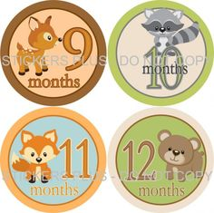 baby shower woodland animal theme | Baby BOY Monthly Growth Onesie T Shirt Stickers Woodland Forest ...