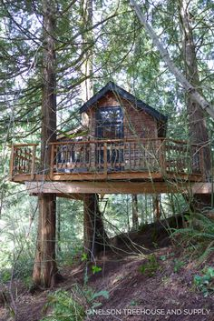 Treehouse Masters, Treehouse Living, Building A Treehouse, Beautiful Tree Houses, Cool Tree Houses, Beautiful Buildings, Haus Am Hang, Tree House Plans, Tree House Designs