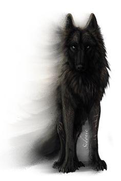 Fera Corda by Sidonie.deviantart.com on @DeviantArt #wolfdrawing