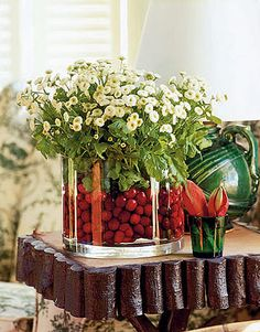 Cranberry Vase:   Cranberries look vibrant in a vase with daisies.  Photo Credit: Michael Luppino