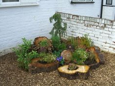 log garden - keeping nicking garden pins off Blake! Our gardens are going to be identical :D - Flower Beds and Gardens Eco Garden, Lawn And Garden, Garden Beds, Back Gardens, Outdoor Gardens, Tree Stump Decor, Water Features In The Garden, Woodland Garden, Flower Beds