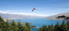 Queenstown, New Zealand- flying fox