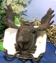 Cast iron moose head wall hook. This sturdy fellow is ready to adorn the cabin walls, or even the man cave! Hang your hat on his horns and your scarf on the hooks, he will keep them safe! Or try placi