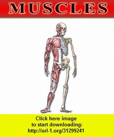 Bryan Edwards Muscles Flash Cards, iphone, ipad, ipod touch, itouch, itunes, appstore, torrent, downloads, rapidshare, megaupload, fileserve