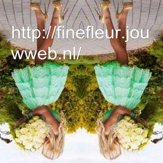 http://finefleur.jouwweb.nl/