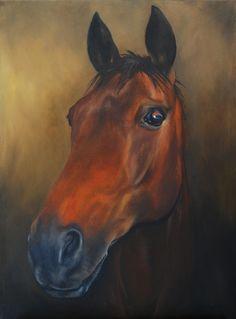 Woody, Horse Portrait, Oil on board