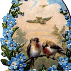 Birds with Forget Me Nots Image – Pretty!