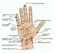 Relieves Carpal Tunnel, Tendinitis, Wrist Pain and Rheumatism.Natural pressure point therapy for pain management and increased circulation beneficial for healing. Four pressure point options.Side effect fr. Anxiety Relief, Stress And Anxiety, Stress Relief, Test Anxiety, Pain Relief, Acupressure Therapy, Carpal Tunnel, Health And Fitness, Insomnia