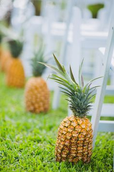 Tropical wedding ceremony decor idea - pineapple wedding ceremony aisle markers! {Kpix Photography}
