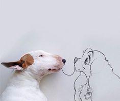 Dans la lignée de LAL le Chienou de Norm le petit carlin,voici les photosInstagram deRafael Mantesso, qui s'amuse à mettre en scène son chien, un a