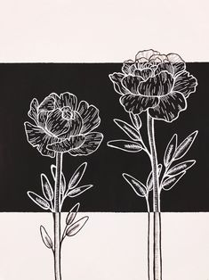 Original Abstract Black and White Rose Flowers and Leafs   Etsy Black And White Flowers, White Roses, Sky Painting, Painting & Drawing, Elephant Wall Art, Black Acrylic Paint, White Gel Pen, Pastel Watercolor, Flower Doodles