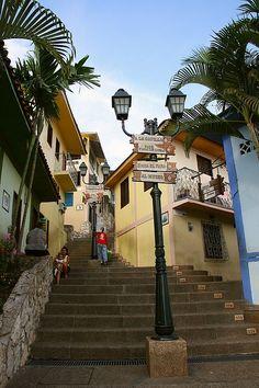 Cuántos escalones son? Las Peñas... Guayaquil