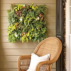 Revive a Wall   Transform any bare vertical spot into a lush living wall with this simple and smart planting system.