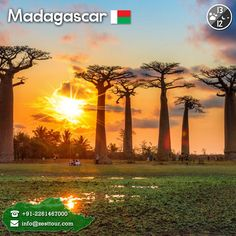 is probably one of the most beautiful places one can ever visit Most Beautiful, Beautiful Places, Madagascar, Africa, Celestial, Sunset, Night, Day, Outdoor