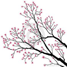 Bare Tree Branches with Pink Flowers