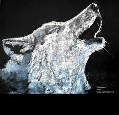 Wolf - Chalk on Black Board by Vincent Kennard