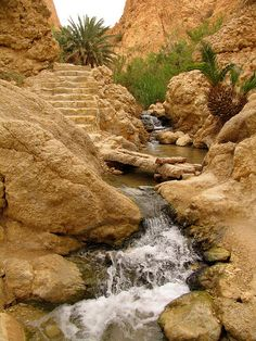 It's a beautiful world The mountain oasis of Chebika / Tunisia (by Sandro Mancuso). Beautiful World, Beautiful Places, Desert Oasis, Photos, Pictures, Wonders Of The World, Places To See, Scenery, Egypt