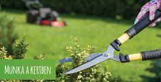 Természetes, hogy egy szép kertet ápolni is szükséges. Különben gyorsan elszaporodnak a vadon növő növények, és a kártevők átveszik az uralmat. Ebben a fejezetben azzal foglalkozunk, hogyan tudja kertjét megfelelően átsegíteni a téli időszakon, és mit tehet kertjének hívatlan látogatói ellen. A megfelelő víz- és tápanyagellátás is fontos szereppel bír a növények optimális fejlődésének szempontjából, valamint előre fel kell majd készülnünk a hidegebb idők beálltára is. Pruning Shears, Garden Tools, Diy, Bricolage, Gardening Scissors, Yard Tools, Do It Yourself, Homemade, Diys