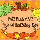 This festive fall activity is great for your literacy center and for using as a whole group instruction.   Your students will surely learn all abou...