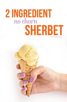 2 Ingredient No Churn Homemade Sherbet Recipe from Tidy Mom for Funner in the Summer