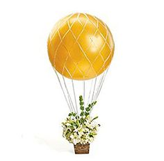 Loftus Hot Air Balloon Net for 3' Balloons Loftus http://www.amazon.com/dp/B003376DOE/ref=cm_sw_r_pi_dp_W0RGwb05ZJJME