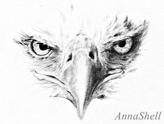 Eagle by AnnaShell.deviantart.com on @deviantART