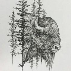 Best Buffalo tattoo ideas on Animal Paintings, Animal Drawings, Art Drawings, Buffalo Art, Buffalo Painting, Bison Tattoo, Into The West, Wildlife Art, Animal Tattoos