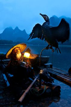 "- ""Old Man and Cormorant"" Guilin, China. Cormorant fishing is a traditional fishing method in which fishermen use trained cormorants to fish in rivers. Historically, cormorant fishing has taken place in Japan and China since about 960 AD. We Are The World, People Around The World, Wonders Of The World, Around The Worlds, Guilin, Foto Art, China Travel, Dojo, Old Men"