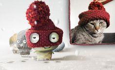 Calypso Stitch is a proud Bandito-Animal Stitch!