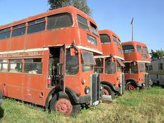 Old London lain languid. London Bus, Old London, Abandoned Cars, Abandoned Places, Rt Bus, Routemaster, Bus Coach, London Transport, Busses
