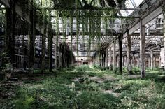 Abandoned industry in Italy. © Roberto Conte (2008)