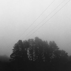 Mist and Powerlines