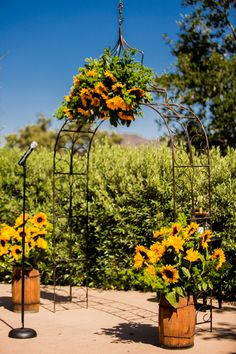 Sunflower wedding decor at ceremony site.   Beautiful Day Photography  #sunflowerwedding