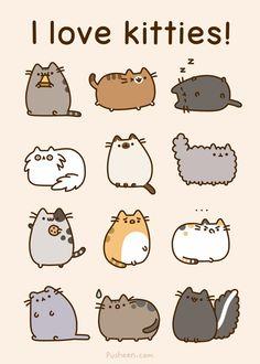 We Heart It の I ♥ kitties! - http://weheartit.com/entry/96825574