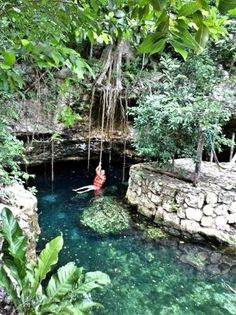 ecopark Kantun Chi: Open sky cenote, check the roots from trees coming down to get some water