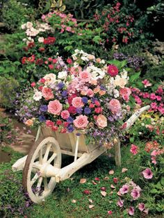 A garden in an old fashioned wooden wheel barrow that is painted white.