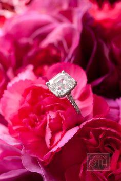 If ANYONE gets engaged tonight... we want to hear all about it !!! ~the ladies  gents at Style Me Pretty ~ http://www.stylemepretty.com/2012/01/12/new-york-city-wedding-by-christian-oth-studios-2/ Photography: Christian Oth